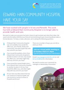 Preview image for the Edward Hain - Have Your Say Poster